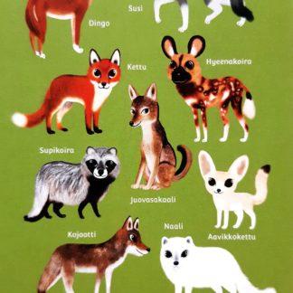koiraeläimiä